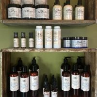 Introducing Healthy Body Investment Bath & Body Products