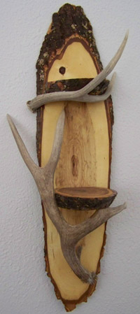 Double Antler Shelf