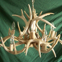 Whitetail Chandelier with 12 Antler Sheds and 8 Lights