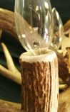 Antler Light Socket