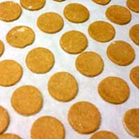 Pumpkin Harvest Dog Treats