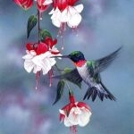 Giclee Art Hummingbird and Blossoms by award-winning Michigan artist Russell Cobane