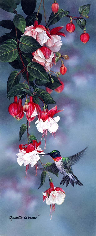 Floral | Cobane Studio