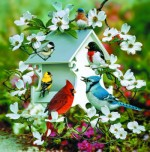 Giclee Art Birdhouse and Birds
