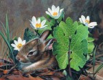 Giclee Art Bunny Rabbit and Flowers by award-winning Michigan artist Russell Cobane