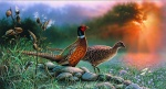 Giclee Art Pheasants by award-winning Michigan artist Russell Cobane