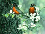 Giclee Art Robins and Apple Blossoms by award-winning Michigan artist Russell Cobane