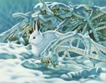 Giclee Art Winter Rabbit by award-winning Michigan artist Russell Cobane