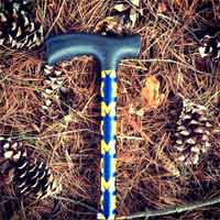 Michigan Cane