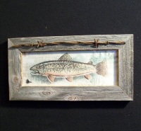 Fish Picture Framed in Barn wood