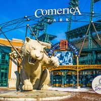 Comerica Park Detroit Tigers Postcard # 3