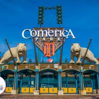 The Comerica Park Postcard