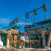 Comerica Park Detroit Tigers Postcard # 2