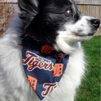 Detroit Tigers dog bandana