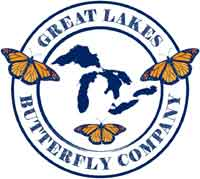 Great Lakes Butterfly Company