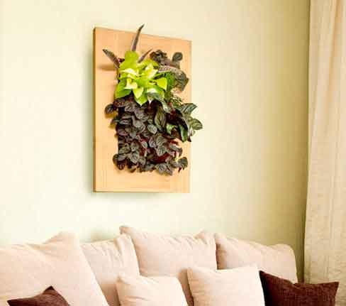 Grovert Indoor Living Wall Planter