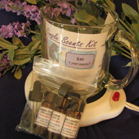 Simple Scents Complete Kit
