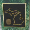 Greeting Cards with Michigan Petoskey Stone