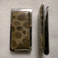 Petoskey Stone Money Clip