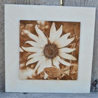 3D Sunflower Shine Burned Picture Into Wood
