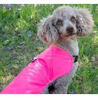 Rain Harness Coat