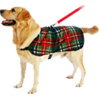 Richards Dog Harness Coat Company
