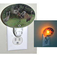 Michigan Photo Glass Nightlight