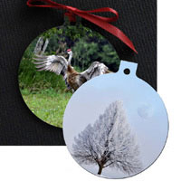 Michigan Photo Ornaments