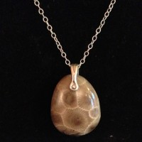 Stunning Petoskey Stone Necklace Now Available!