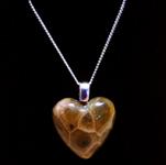Petoskey Stone Heart Necklace
