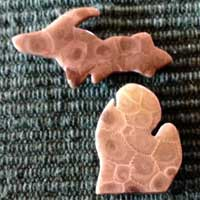 Michigan's Upper Peninsula & Lower Peninsula Petoskey Stone Magnets