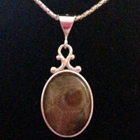 Oval Petoskey Stone Necklace
