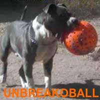 Unbreakoball Dog Ball