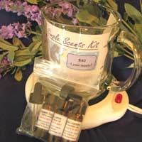 Simple Scents Kit