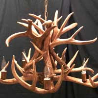 Whitetail Chandelier with 8 Antler Sheds and 5 Lights