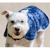 Winter Warmth Harness Coat