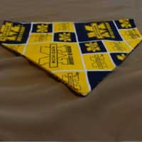 University of Michigan dog bandana