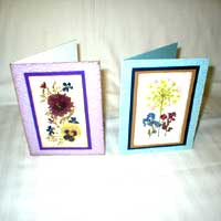 Greeting Cards with Dried Michigan Flowers