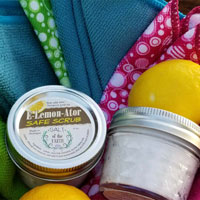 E-Lemon-Ator Natural Safe Scrub Cleaner